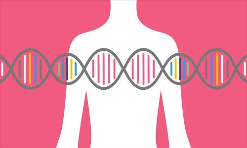 آماده شدن برای ملاقات با یک مشاور ژنتیک