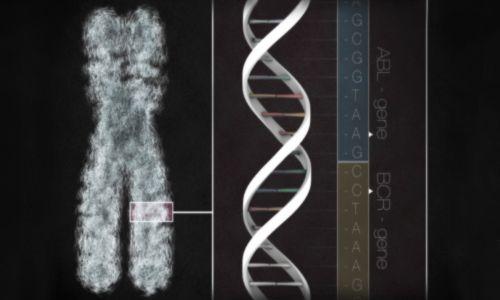 آزمایش ژنتیک در طول بارداری