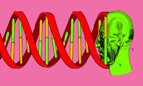 آزمایش ژنتیک چجوریه