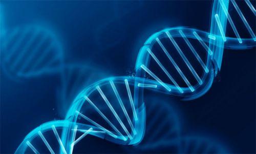 چگونه از سرطان تخمدان ارثی جلوگیری کنیم؟| آزمایش ژنتیک برای تشخیص ارثی بودن سرطان تخمدان