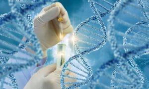سرطان و جهش در ژن BRCA2