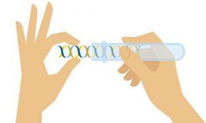 پیشگیری از سرطان با آزمایش ژنتیک