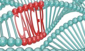 جهش ژنتیکی در سرطان سینه