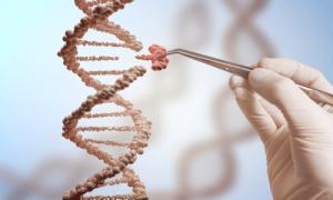 نتیجه آزمایش ژنتیک برای جهش ژنتیکی و ریسک ابتلا به سرطان