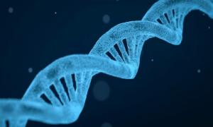 ژنها و سرطان